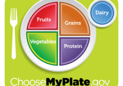 Does the New 'MyPlate' Serve Us Well?